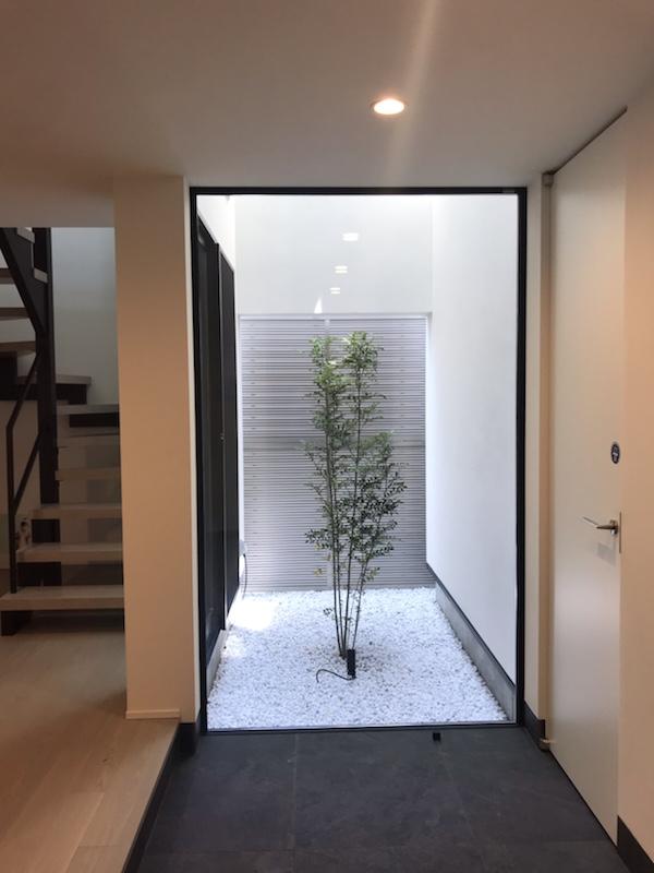 web内覧会 (2) 坪庭とシンボルツリー